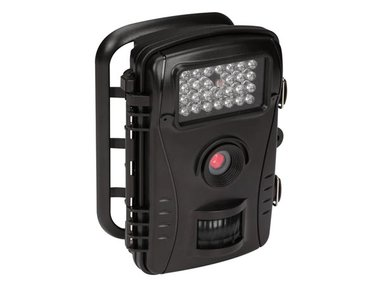 WILDCAMERA (CAMCOLVC26N)